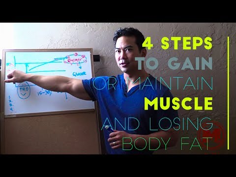 4-basic-nutrition-rules-to-help-you-build-and-maintain-lean-muscle-and-lose-body-fat-explained