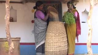 MILLETS - The Miracle Grains