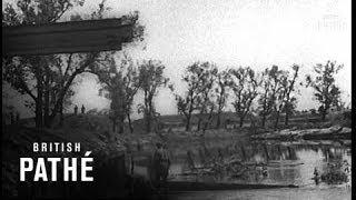 German Propaganda Films (1941)