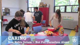 Caring: Non Nobis Solum - Not For Ourselves Alone