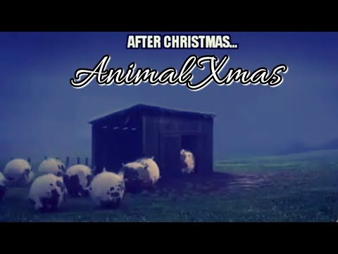 How animals look like after Christmas.