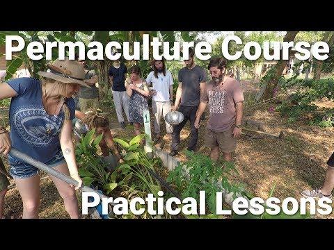Permaculture Design Course Thailand Practical Lessons