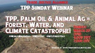 TPP, Palm Oil, & Animal Agriculture = Forest, Water, & Climate Catastrophe! 3/20/16