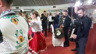 Muzica moldoveneasca   Muzica de petrecere cu Formatia Armonia Chisinau   Muzica la nunta.