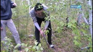 Якутск.ru публикует видео с места убийства Анастасии Андреевой