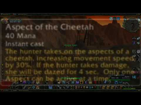 Hunter Tutorial: The Hunter's Toolkit [Nostalrius / Elysium]