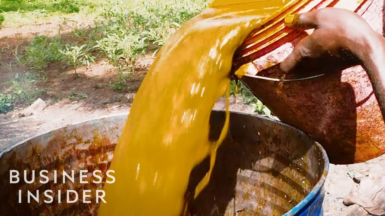Download Why Palm Oil Is So Cheap