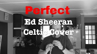 Download Lagu Perfect - Ed Sheeran Celtic Cover - Irish Pipes & Whistles Mp3