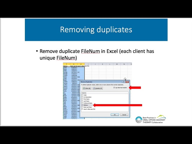 Profile EMR Queries How To