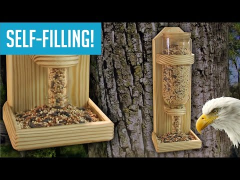 diy-wine-bottle-bird-feeder
