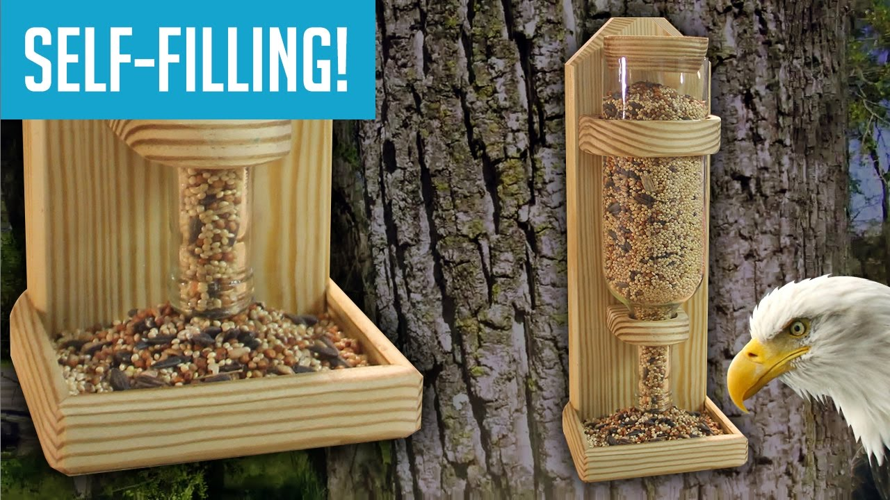 craft houses backyard your and building feeder diy to feeders ideas cherish bird