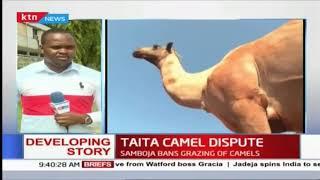 Taita camel dispute: Taita Taveta Governor Granton Samboja bans grazing of camels