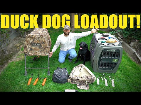 Duck Hunting Dog Loadout 2020!