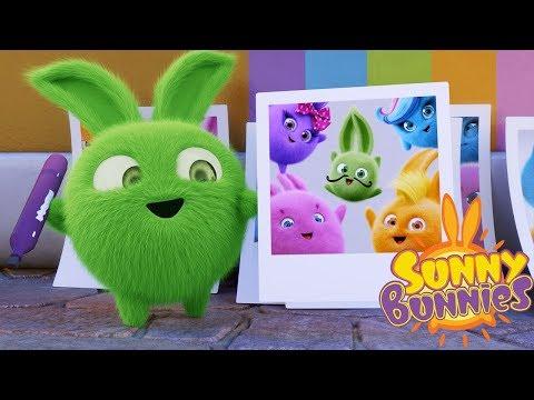 Cartoons for Children | SUNNY BUNNIES HOPPER PRANKS | Funny Cartoons For Children