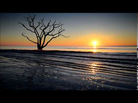 Boneyard Beach (Botany Bay Plantation)