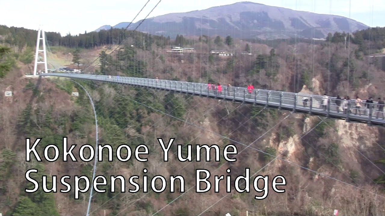 how to build a cat suspension bridge
