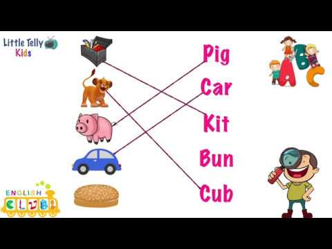 English Exercise || Match Pictures with their 3 letter words| Fun Learning for Kids | 3 letter words