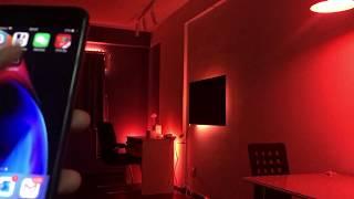 Trải nghiệm đèn thông minh Philips Hue với ứng dụng Light DJ
