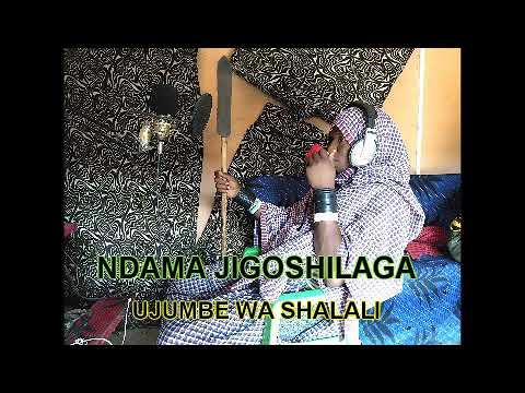 Download NDAMA JIGOSHILAGA UJUMBE WA SHALALI BY LWENGE STUDIO
