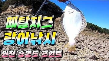 메탈지그 광어낚시 인천 승봉도 선착장 포인트 flatfish fishing