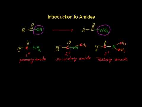 Introduction to Amides  - Primary, Secondary and Tertiary Amides