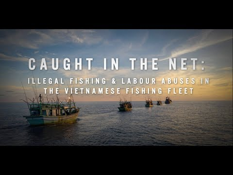 Caught In The Net: Illegal Fishing & Labour Abuses In The Vietnamese Fishing Fleet
