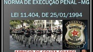 LEI 11.404 DE 1994 -NORMAS DE EXECUÇÃO PENAL-MG - 6