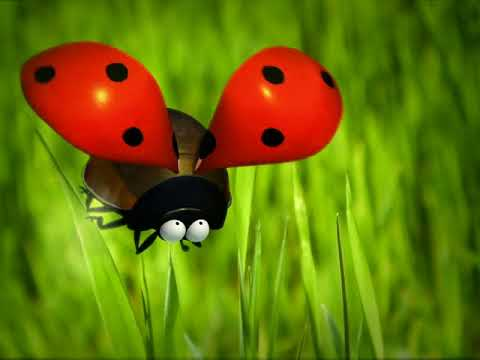 Насекомые мультфильм мухи