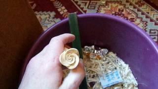 Как вырезать розу, резьба по дереву. Урок начинающим.