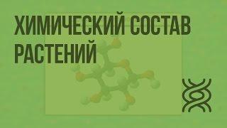 Химический состав растений. Видеоурок по биологии 6 класс