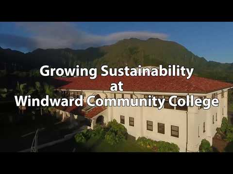 Growing Sustainability at WCC