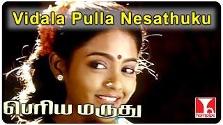 Periya Marudhu Songs| Vidala Pulla Nesathuku |Ilaiyaraaja Songs|Vijayakanth, Ranjitha| Hornpipe