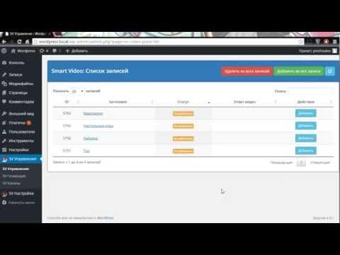 Парсер видео YouTube для Wordpress - Добавление видео к записям