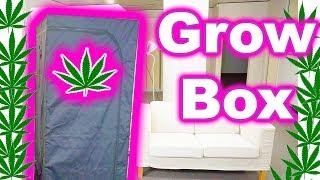 Building a Marijuana Grow Box in 1 Hour