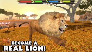 🦁👍ULTIMATE  ♌️LION SIMULATOR - By Gluten Free Games - Compatible with iPhone, iPad, and iPod touch.
