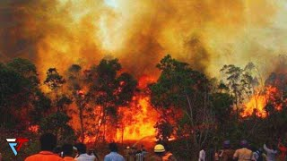 Download Forest fire rages in the Himalayas. Wildfire in Uttarakhand, India.