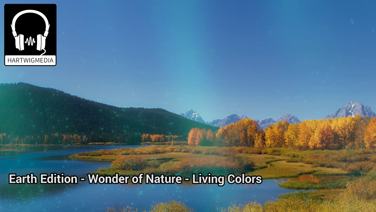 naturfilme