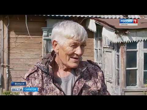 Тысяча африканских сомов: житель Вольска устроил в сарае рыбную ферму
