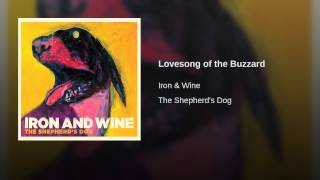 Lovesong of the Buzzard