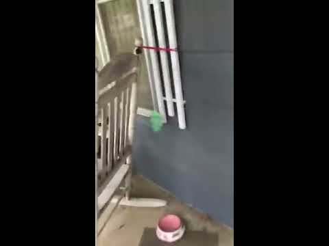 Navy Seabee surprising Mother with Granddaughter