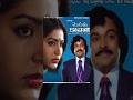 Mogudu Kavali Telugu Full Movie   Chiranjeevi   Gayatri   Nutan Prasad video