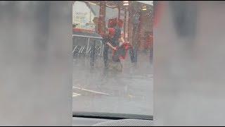 子犬が大雨でびしょ濡れに…心温まる店員さんの行動(動画)