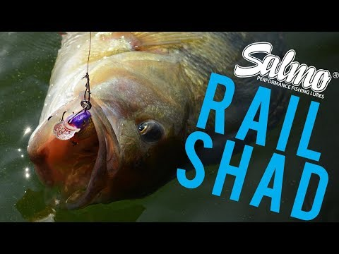 SALMO RAIL SHAD