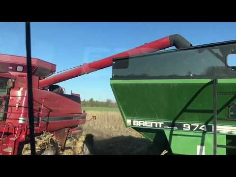 #Harvest18 Resumed