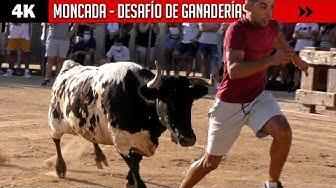 Imagen del video: TOROS: Desafío Hermanos Cali VS Machancoses