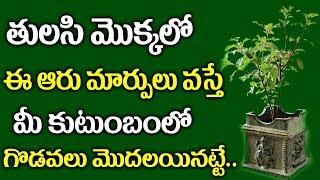 తులసి మొక్కలో ఈ ఆరు మార్పులు వస్తే మీ కుటుంబం తల్లకిందులు అవుతుంది ..!    Tulasi Tree Unknown Facts