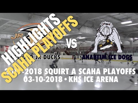 HIGHLIGHTS 2018 Squirt A SCAHA Playoffs. Lakewood Jr Ducks vs Anaheim Ice Dogs (03-10-2018)