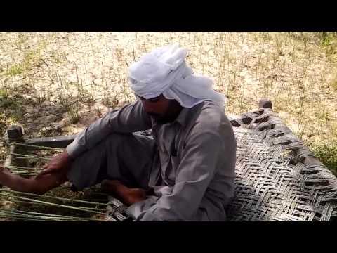 Tehseel shakar garh distric narowal