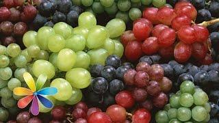 видео Готовим домашнее вино из винограда по лучшему простому рецепту