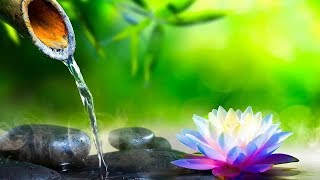 Relaxing Piano Music  Sleep Music, Water Sounds, Relaxing Music, Spa Music, Meditation Music